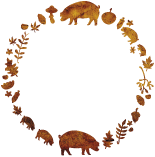 The Story Pig, Free Range Pork Suppliers