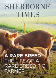 A Month on the Pig Farm May 18