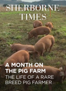 A Month on the Pig Farm Jul 19