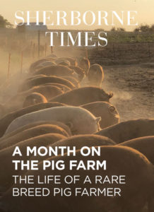 A Month on the Pig Farm Aug 19